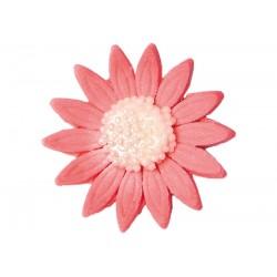 Kwiatek - Stokrotka...