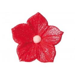 Kwiatek - Petunia czerwona...
