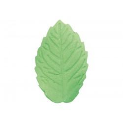Listek - mały zielony - 100...