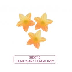 Kwiatki mini herbaciane...