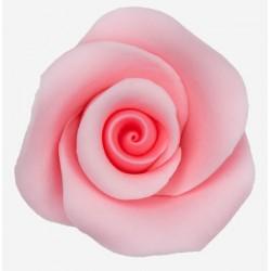Róża Mercedes 50 różowa - 6...