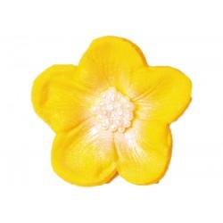 Kwiatek - Bodziszek żółty -...