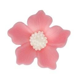 Kwiatki - Bodziszek różowy...