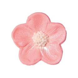 Kwiatek - Bodziszek różowy...
