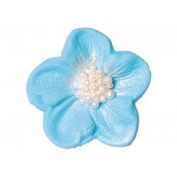 Kwiatek - Bodziszek...