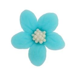 Kwiatki - Jaśmin niebieski...