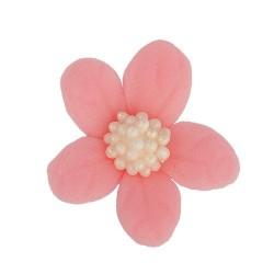 Kwiatki - Jaśmin różowy- 10...