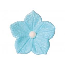 Kwiatek - Petunia niebieska...